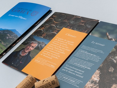 Brochure print graphic design wine