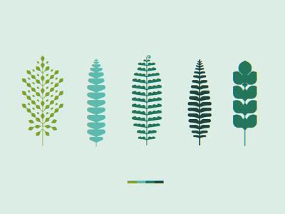 Geometric Ferns northwest pacific green forest geometric geo minimal illustration leaves plants ferns