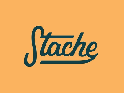 Logotype 2 monoweight custom script typography type ligatures lettering