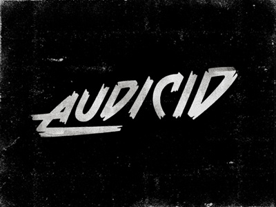 Audicid drib