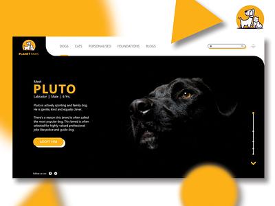 Planet Paws Adoption Concept Website Design illustration website design typography uidesign branding webdesign ux uiux ui design
