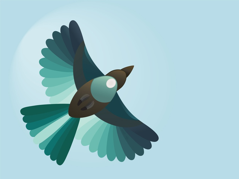 Tui flying high flying illustrators illustrator design illustrator bird illustration bird new zealand tui