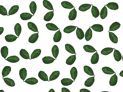 COFFEE Plant green nature graphicdesign graphic adobeillustator ilustrator plant illustration digitalart digital leaves plant pattern design pattern