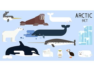 arctic set small icon vector cartoon arctic animals set design illustraion flat
