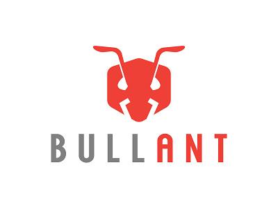Bull Ant Logo logo ant bull