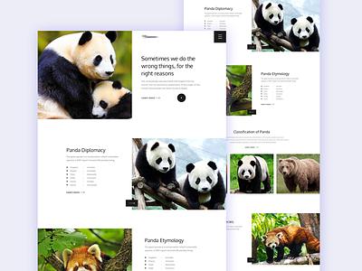 Panda-Landing Page Idea creative typography trend exploration agency app landing design minimal logo web ui solution saas resources project management illustration digital clean