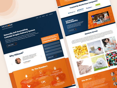 Vesisorb - Corporate Website seo web illustrator website ux ui design branding