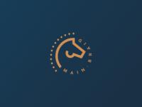 Main Braid App Icon