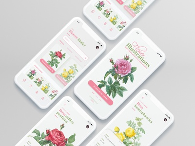 Flower Illustration App UI mobile app design ios icons clean mobile illustration app design ux ui