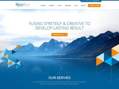 Website Desgin