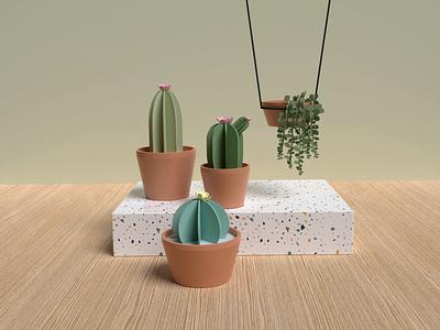 3D Cactus cacti cactus textures 3d illustration blender3d blender illustration 3d