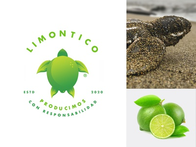 Limontico® Logo Concept logo combination costa rica ecological logo design logo mark illustration logo illustration art leaf logo leaf lemon logo lemon turtle logo turtle animal logo animal inspiration illustration logo concept logo inspiration logo