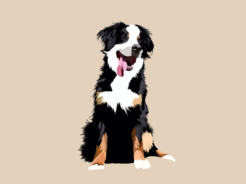 Buddy dog vector illustrator flat illustration