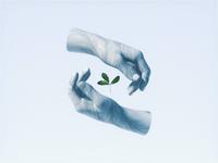 Sustainability 🌱