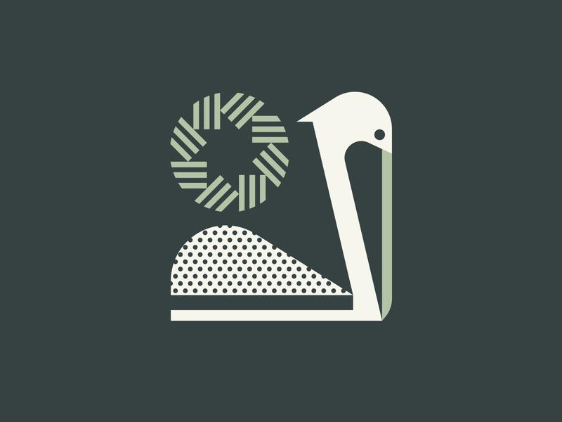 Pelican ocean water wing feather sun bird pelican