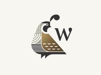 Wail beak feather animal logo bird quail