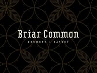 Briar Common pt. V