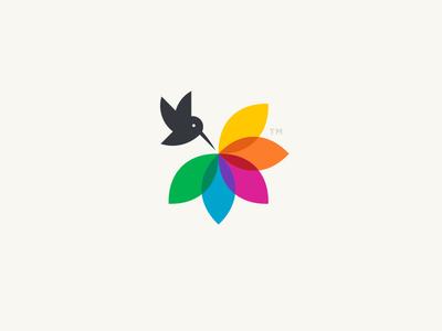Color Harvest rainbow hummingbird flower color