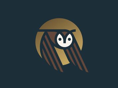 Owl wing moon flying bird owl