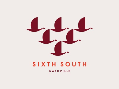 Sixth South geese goose birds bird tennessee