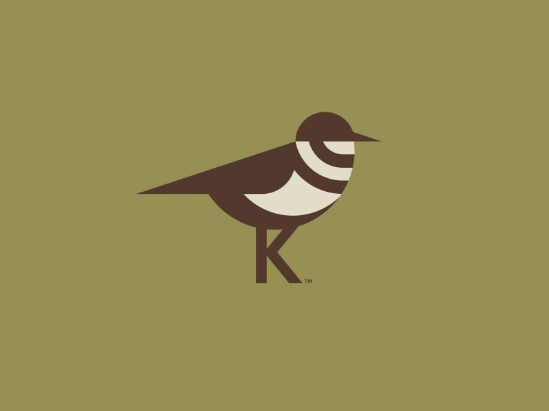 Killdee pt. II clothing outdoors apparel texas bird killdeer