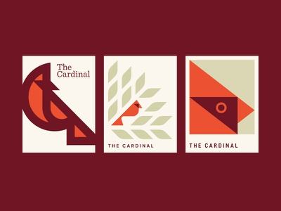 Conclave red leaves tree bird cardinal