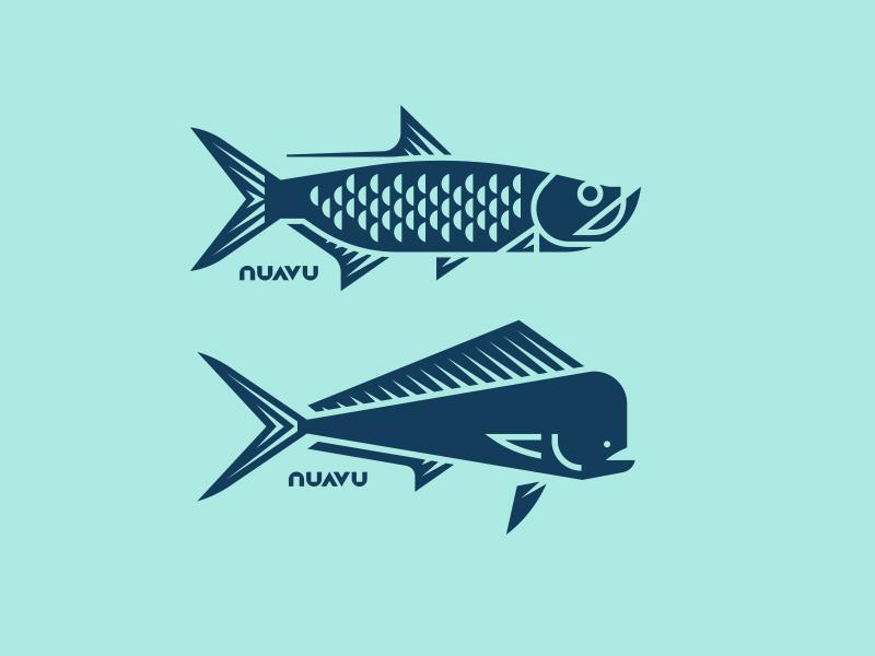 Nuavu sea seafood ocean water mahi dolphin tarpon fish