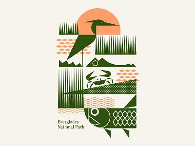 Everglades National Park water sunset grass crab tarpon fish heron bird alligator sun florida