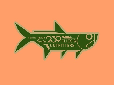 239 Flies & Outfitters beach fly fishing water florida feather tarpon fish