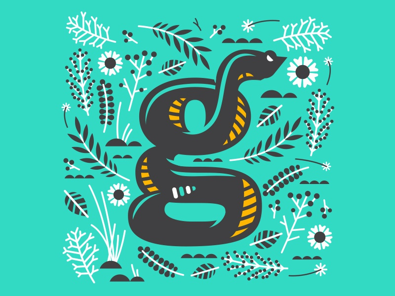 Lost Type Co Op snake explore typeface lost type lost type co op