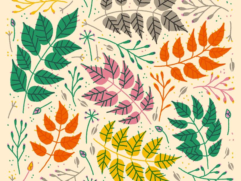 Illustration flowers twigs plants leaves