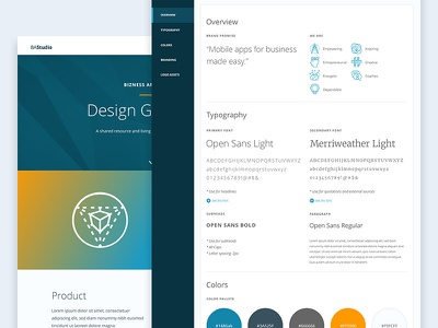Online Style Guide color typography style guide web brand