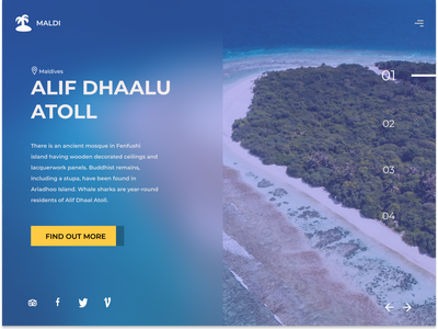 TRAVEL WEBSITE maldives community travel app topology uiux travel uidesign design dashboard daily 100 challenge dailyui