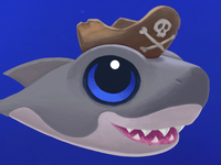 Close-up of baby shark w/ pirate hat