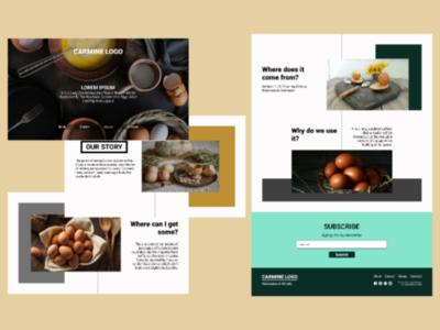 Layout web design web design design ux uiux ui