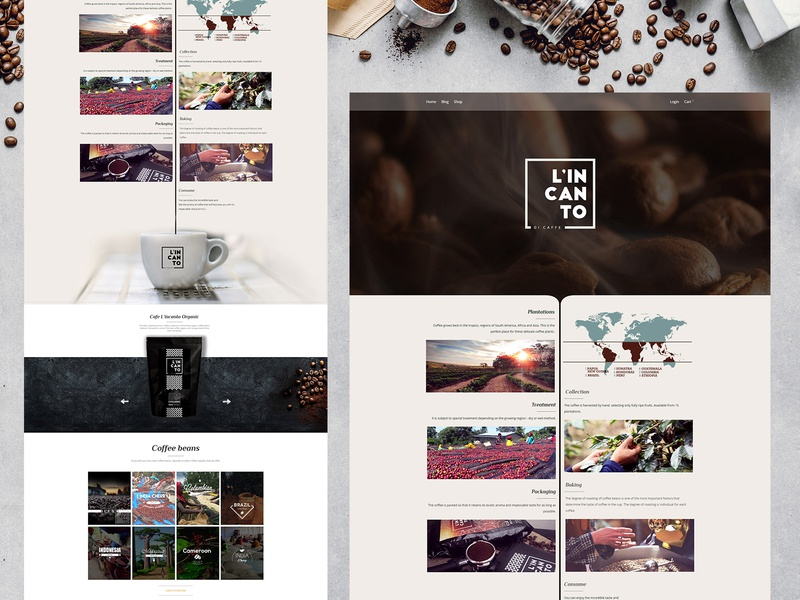 Coffee Shop Website coffeeshop creative design website web development company ux ui