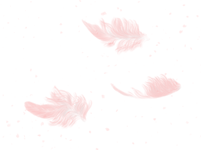 Feather float design illustration art illustration calm