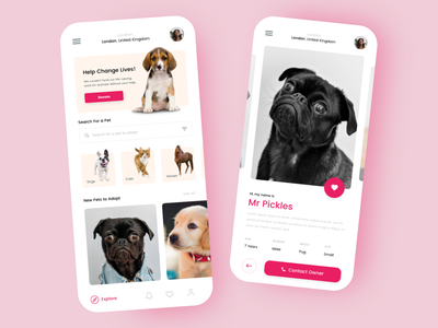 Pet Adotoption App Concept dailychallenge xddailychallenge adobe xd app design pets