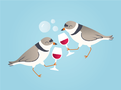 Piping Plovers celebration piping plovers bubbly wine birds illustration