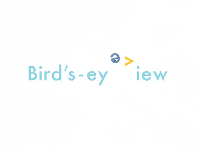 Bird's-eye View | Typographical Poster sans-serif type eye view bird illustration minimal graphics simple typography