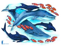 Blue Whales and Friends