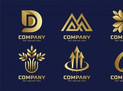 Logo design logo design logo design branding logo design concept logo animation logo designer logo designs logos logotype logo mark logodesign typography professional animation illustrator vector business illustration logo design branding