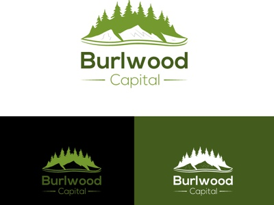 Mount Logo branding logo graphic design animation ui