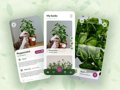 My herbs App application mobile covid lockdown free time garden green plants gardening herbs design jitteam ux ui app