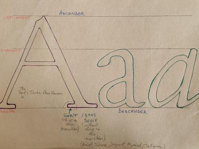 serif , sans serif type typeface typography