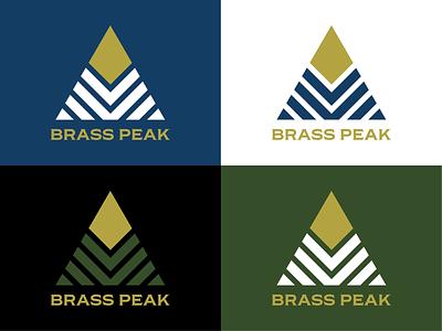 Brass Peak Brand Identity logos badges badge ski resort ski logo identity design brand identity
