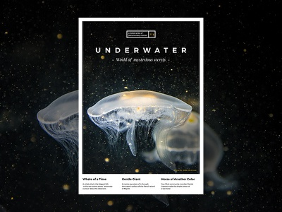 UNDERWATER - Poster design design cover promotion ocean sea underwater dark slovakia clean print a4 poster