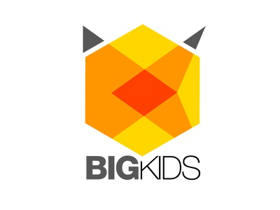 BigKids identity logo identity charte