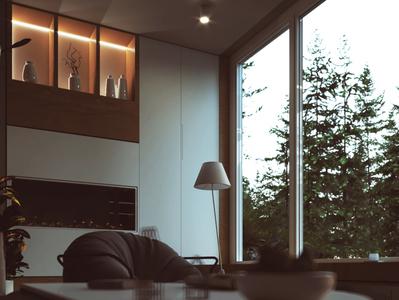 Comfort in the wild vray design architecture illustration visulisation render corona 3dsmax
