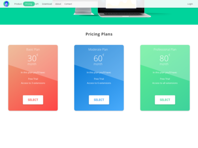 Pricing Page Challenge
